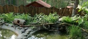 streichel zoo im haus natur und umwelt berlin mein rosinenbomber. Black Bedroom Furniture Sets. Home Design Ideas